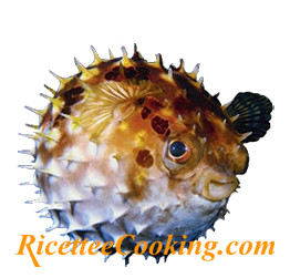 Pesce palla in difesa