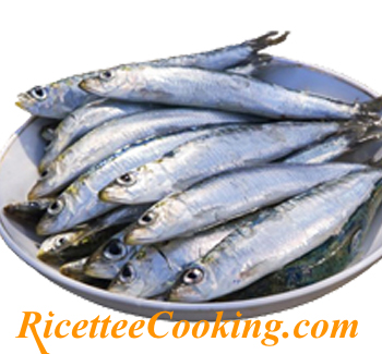 Sardine in carpione